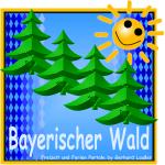 logo-werbeagentur-bayerischer-wald-internetagentur-oberpfalz