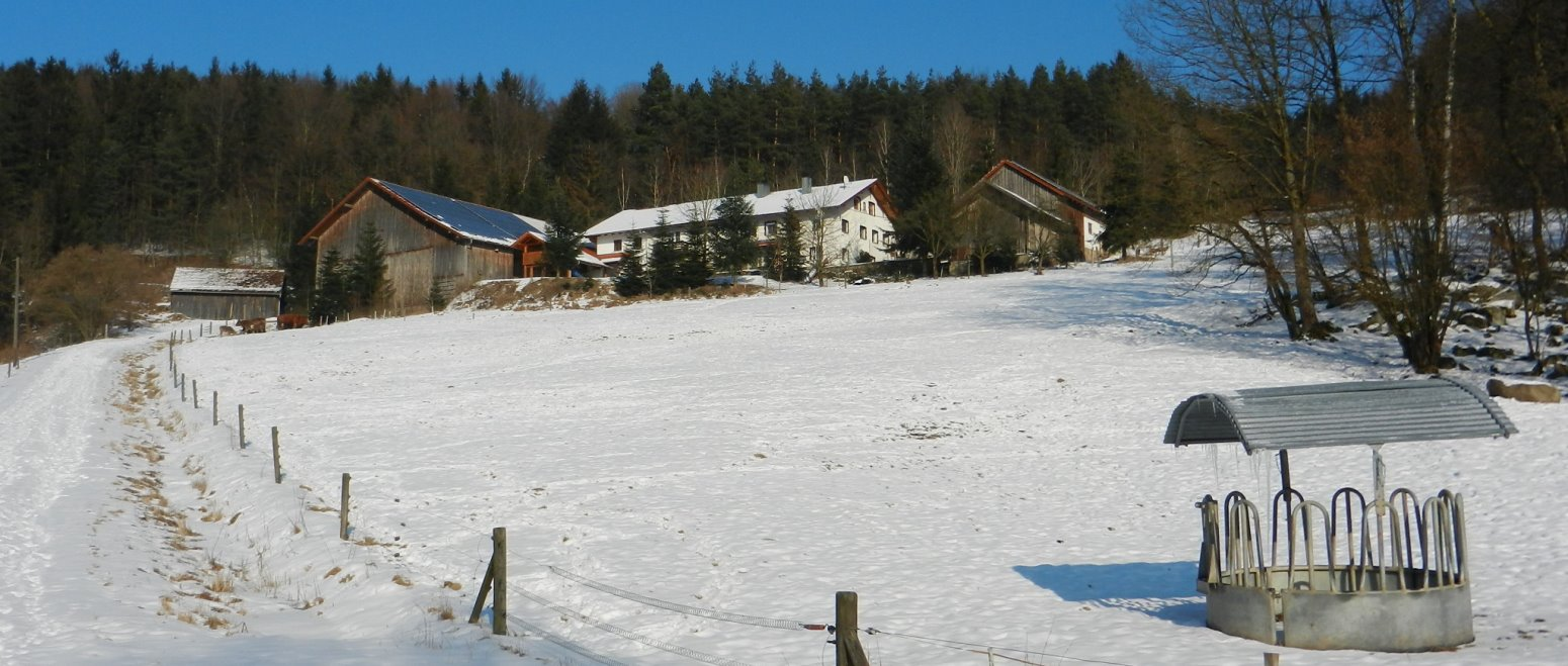 panoramabilder-simmerlhof-winterurlaub-bauernhof-bayerischer-wald
